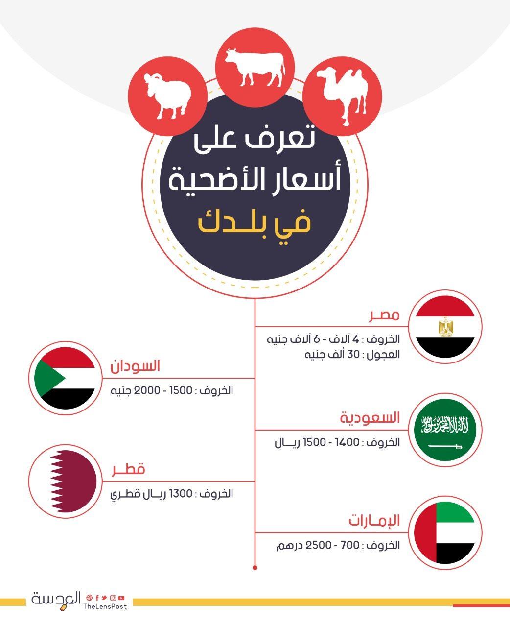 الدول العربية و اسعار الاضحية فيها
