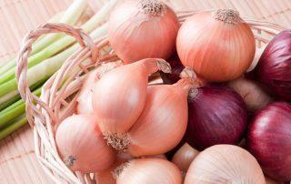 البصل يخفف آلام الأذن والنعناع للصداع النصفي