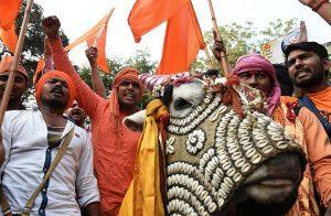"""قتل مسلم وإصابة آخر رميا بالرصاص على يد""""حراس البقر"""" في الهند"""