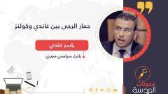 ياسر فتحي يكتب :حمار الرحى بين غاندي وكولنز