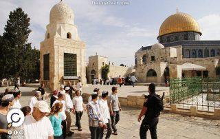 في 3 أشهر.. 12 ألف مستوطن إسرائيلي اقتحموا المسجد الأقصى