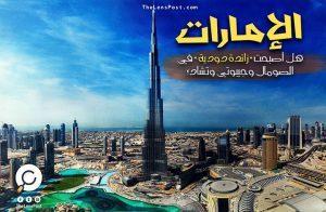"""هل أصبحت الإمارات """"زائدة دودية"""" في الصومال وجيبوتي وتشاد؟"""