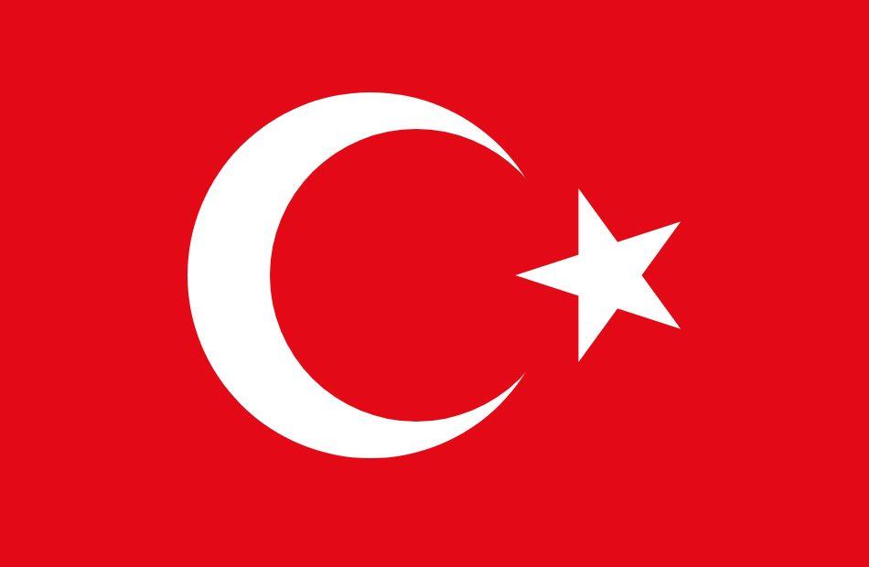 الأخطبوط التركي