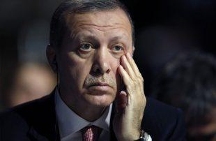 أردوغان-يعبر-عن-حزنه-وتضامنه-مع-ضحايا-الطائرة-والانهيار-الجليدي