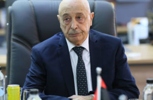 تركيا لا توافق على وجود عقيلة صالح بالمفاوضات