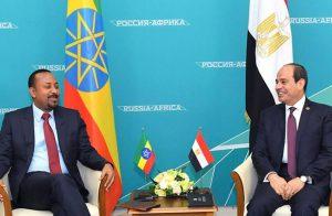 يناقض نفسه .. السيسي ينبطح أمام إثيوبيا لكنه يدعو المصريين للتشبه بالأسود!