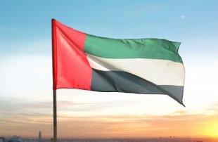 مسؤول يمني: الإمارات ملطشة واتصالها بإيران يكشف دورها الخبيث في بلادنا