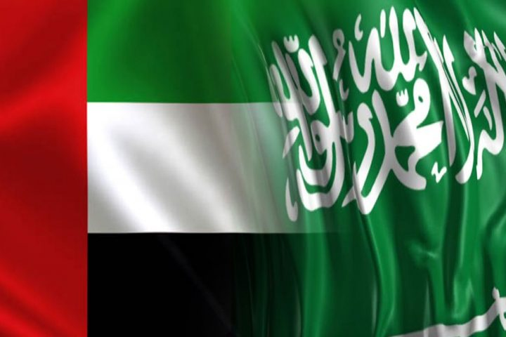 منظمة حقوقية بارزة تتهم السعودية والإمارات بتعمد استهداف الجيش اليمني