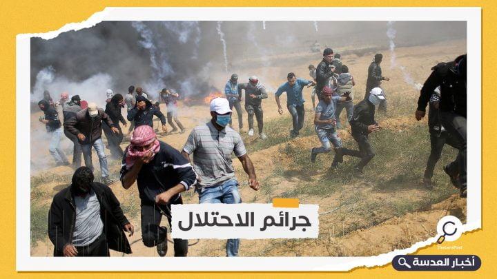 الكيان الصهيوني يعتقل 6 نساء ومسؤول بالمسجد الأقصى