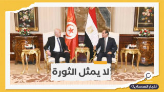 """رئيس تونسي سابق ينتقد زيارة """"سعيد"""" للسيسي"""