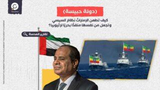 كيف تطعن الإماراتُ نظامَ السيسي وتجعل من نفسها منفذًا بحريًا لإثيوبيا؟