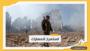 اليمن.. التحالف يعلن اعتراض 8 طائرات و3 صواريخ أطلقوا تجاه السعودية