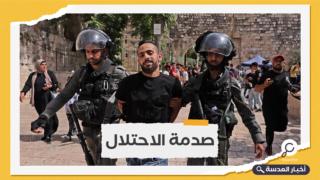 جيش الاحتلال يعتقل 50 فلسطينيًا بالضفة والقدس