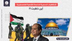 التظاهرات المصرية الداعمة للقضية الفلسطينية.. أين ذهبت؟!