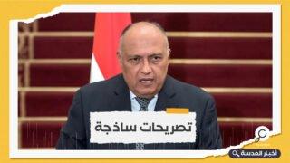 وزير الخارجية المصري: لن نتضرر من الملء الثاني لسد النهضة