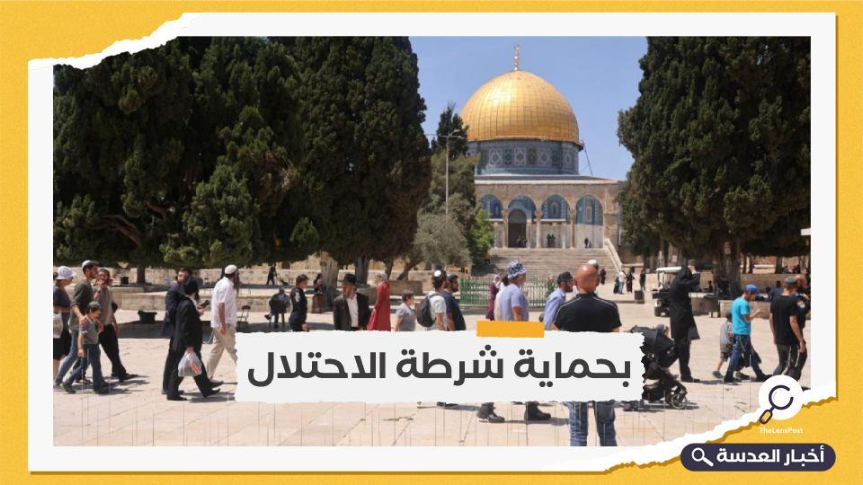أكثر من 500 مستوطن يهودي يقتحمون باحات المسجد الأقصى