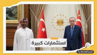 زيارة نادرة.. طحنون بن زايد في يلتقي بأردوغان في أنقرة