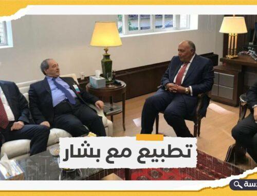 وزير خارجية النظام المصري يلتقي نظيره السوري